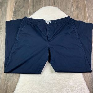 Coldwater Creek Blue Chino Pants Size 16